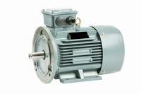Voet-/Flensmotor 0,75 kW - 3000 TPM - Flens B5