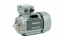 Voet-/Flensmotor 0,09 kW - 1500 TPM - Flens B14a