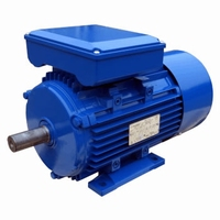 Elektromotor 230 Volt - 0,75 kW - 3000 TPM - B3