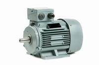 Elektromotor 30 kW - 3000 TPM