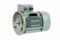 Flensmotor 3 kW - 3000 TPM - klein huis